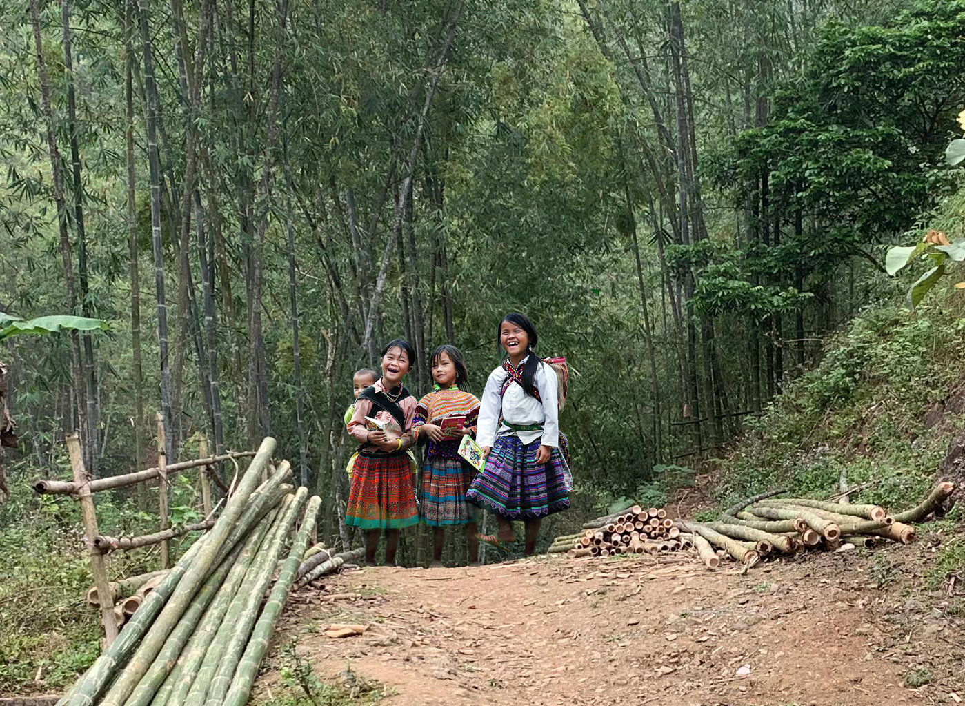Bamboo empowers Sustainable Development in Vietnam