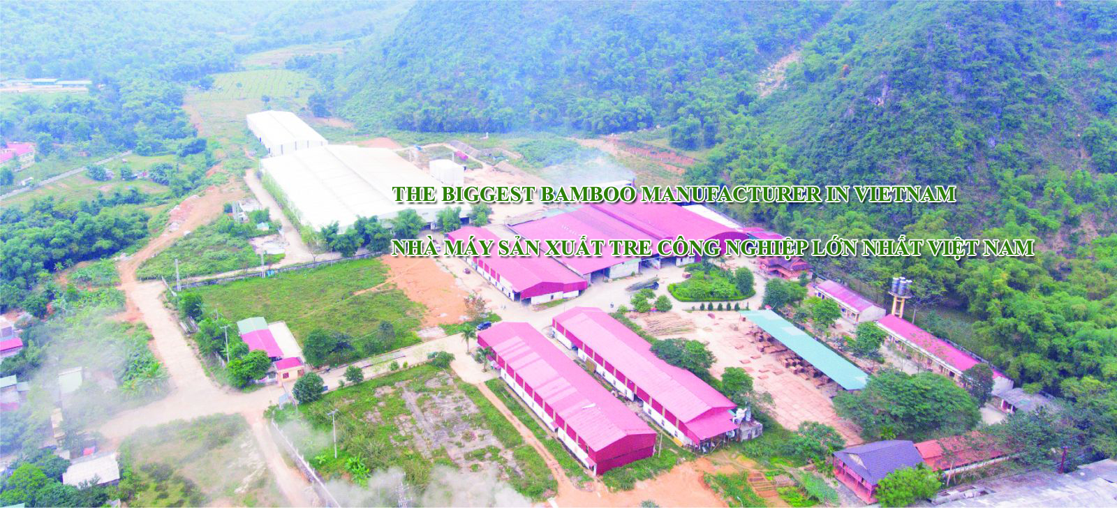 The biggest bamboo factory in Vietnam